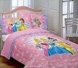 Disney Princess Loving Hearts twin size comforter