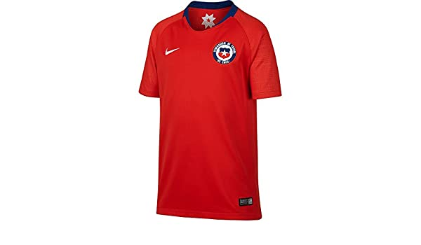 Nike 2018-2019 Turkey Home Football Soccer T-Shirt Camiseta (Kids): Amazon.es: Deportes y aire libre