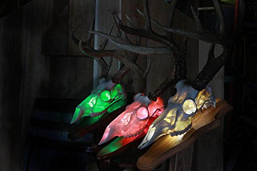Price comparison product image Skull Shine 20 Color Light Kit with Remote Control for Skull Mounts
