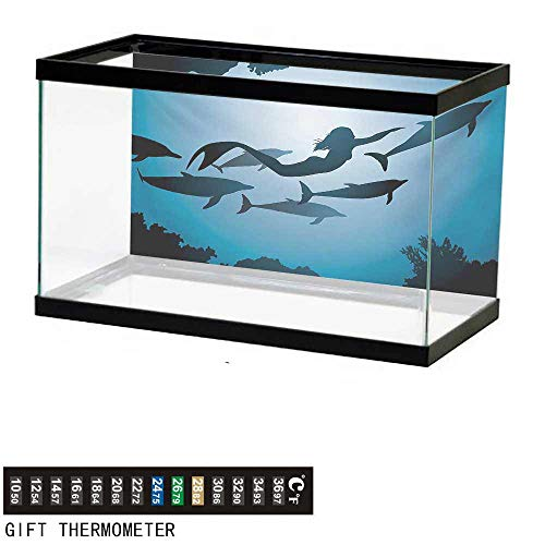 (wwwhsl Aquarium Background,Underwater,The Mermaid and Dolphins Underwater View Travel Diving Fin Sea Life,Blue Black Petrol Blue Fish Tank Backdrop 60