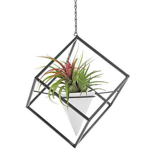 [7 Inch Modern Art Hanging Metal Cube Frame with Ceramic Pyramid Planter] (Frame Planter)