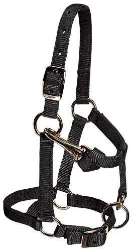 Weaver Leather Nylon Miniature Horse Adjustable ()