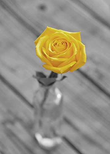 Bathroom Decor Grey And Yellow Flower Photography Print Wall Art Rose