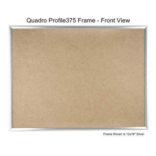 Quadroフレーム8.5 X 20インチPicture Frame シルバー 2 シルバー B077GN2NG3