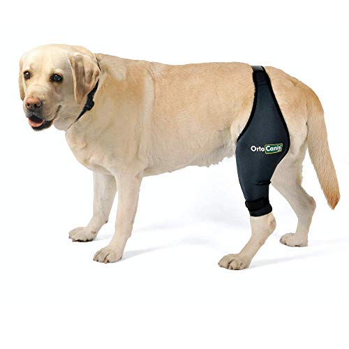 Ortocanis Original Knee Brace for Dogs with ACL, Knee Cap Dislocation, Arthritis - Keeps The Joint Warm - Reduces Pain and Inflammation - 9 Sizes for Left or Right Leg