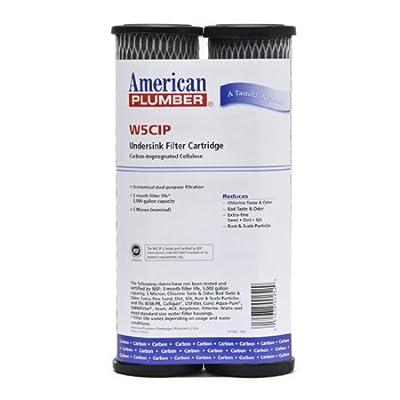 American Plumber W5CIP Undersink Filter Replacement Cartridge (2-Pack)