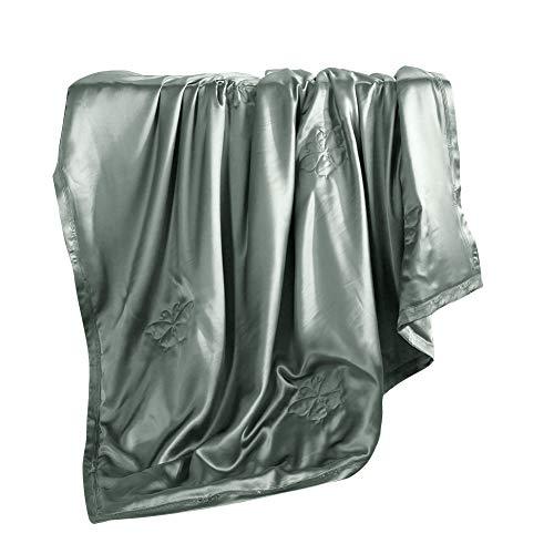 THXSILK 100% Silk Blanket Comforter Insert and Shell for Sofa Reading Child Children Adult Senior (59