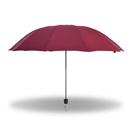 Kompakte Reise Umbrella w/Windproof Double Canopy Construction-Windproof, Reinforced Canopy, Ergonomic Handle, Auto Open/Clos