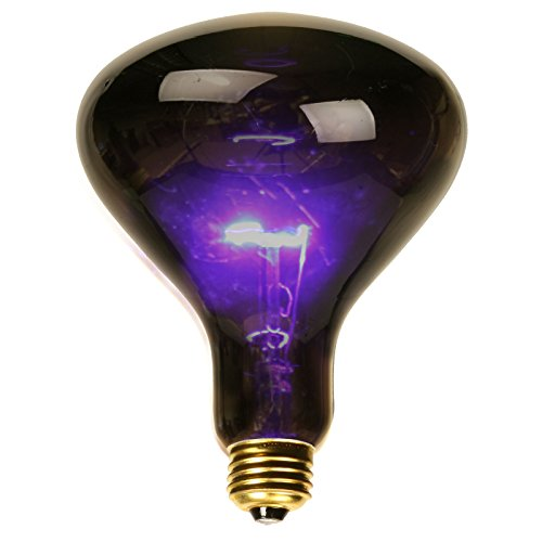 (Small Black Light Spotlight Bulb)
