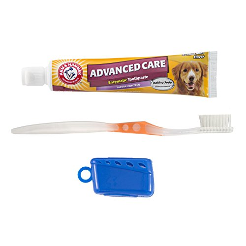 Arm-Hammer-Clinical-Care-3-Sided-Toothbrush-Toothpaste-Kit-Banana-Mint-Flavor
