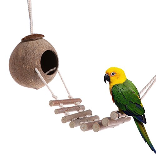Parrot toys ,NNDA CO Bird Parrot Toy Nest Hut Cage Natural Coco Hideaway with Ladder,coconut shell+sisal rope by NNDA CO