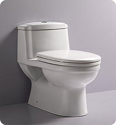 Fresca FTL2222 Dorado Dual Flush Toilet with Soft Close Seat (1 Piece), Ceramic