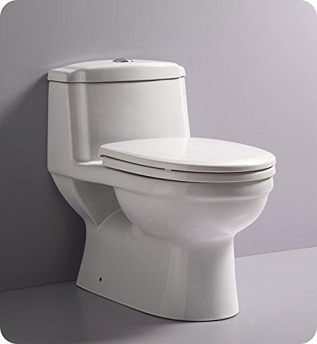 Fresca FTL2222 Dorado Dual Flush Toilet with Soft Close Seat (1 Piece), Ceramic by Fresca