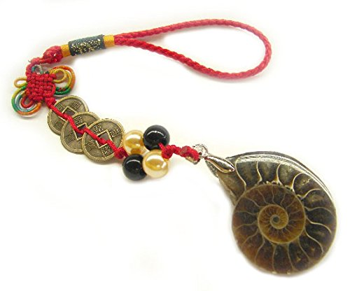 Feng Shui Spiral Snail Ammonite Shell Charm