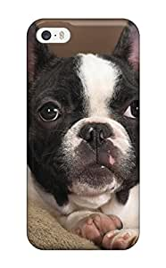 8350664K30404326 Premium Boston Terrier Dog Heavy-duty Protection Case For Iphone 5/5s