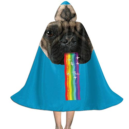 Snapchat Rainbow Halloween Costume (Pug Puking Rainbow Snapchat Filter Unisex Hooded Cloak Cape Halloween Party Decoration Role Cosplay)