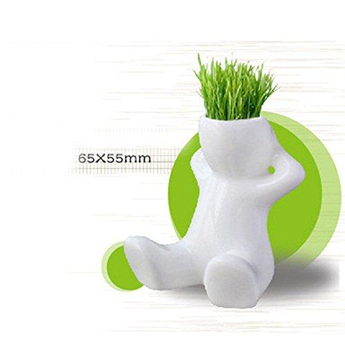 Ocamo Mini Pot Ceramic Porcelain Bonsai Grass Doll Hair Man Plant Desk Decoration White (Ceramic Grass)