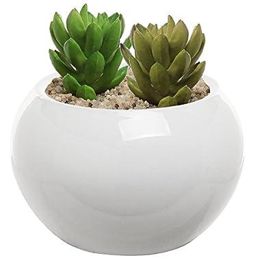 6.75 Inch Round Modern White Ceramic Succulent Planter Pot - MyGift®