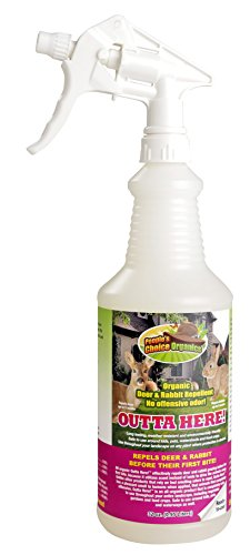Outta Here! Organic Deer & Rabbit Repellent 32 oz Ready to Use