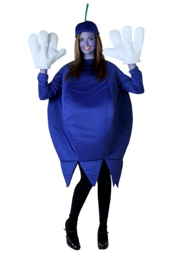 [Fun Costumes Blueberry Costume Standard] (Child Willy Wonka Costumes)