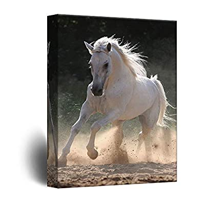 Majestic Freedom Running Horse - Canvas Art