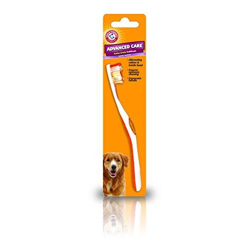 ARM et Hammer Advance soin en caoutchouc à poils de brosse à dents pour chiens