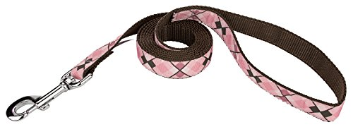 Country Brook Design | 3/4 Inch Pink and Brown Argyle Ribbon Dog Leash - 6 Foot (Grosgrain Ribbon Argyle)