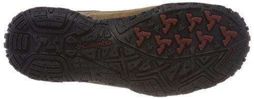 Columbia Peakfreak Venture Low Suede WP, Scarpe da Arrampicata Basse Uomo Marrone (Delta, Deep Rust 257)