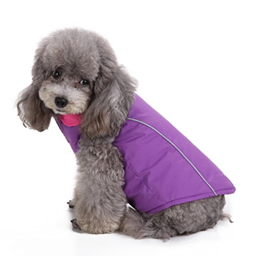 SMALLLEE_LUCKY_STORE XCW0044 Dog Winter Coat Jacket for Chihuahua Apparel