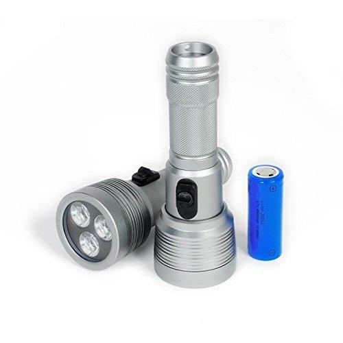Best Divers Altair Torch 1500 Lumen