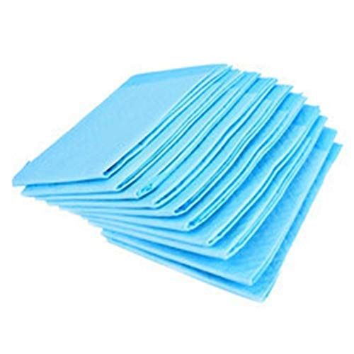Hygienic Underpads 10 Sheets 60X90Cms
