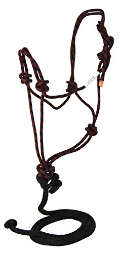 Adult Rope Halter (Hamilton Average Adult Rope Halter, Black and Wine)