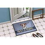 Caroline's Treasures BB1446JMAT Jack Russell Terrier Welcome Indoor or Outdoor Mat 24x36, 24H X 36W, Multicolor 4