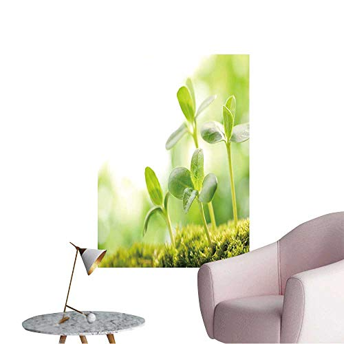 (Wall Stickers for Living Room Young Sprout in Springtime,Closeup. Vinyl Wall Stickers Print,24