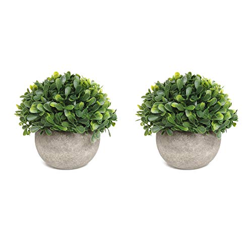 HOMFINER Set of 2 Realistic Mini Artificial Plants Potted Premium Packing Plastic Faux Little Green Leaf Fake Topiary Shrubs for Home Decor