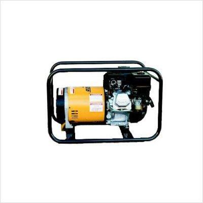 Winco WT3000H Industrial Portable Generator, 3,000W Maximum, 102 lb. Review
