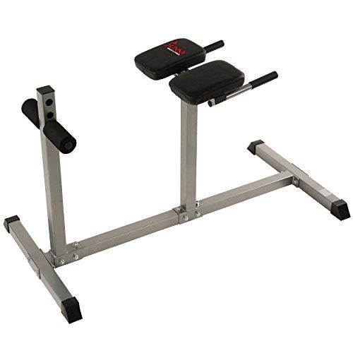 Sunny Health & Fitness SF-BH6503 Roman Chair