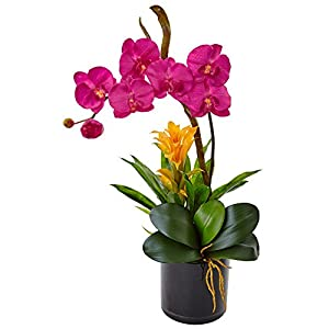 Nearly Natural Orchid and Bromeliad Silk Arrangement Dark Pink 33