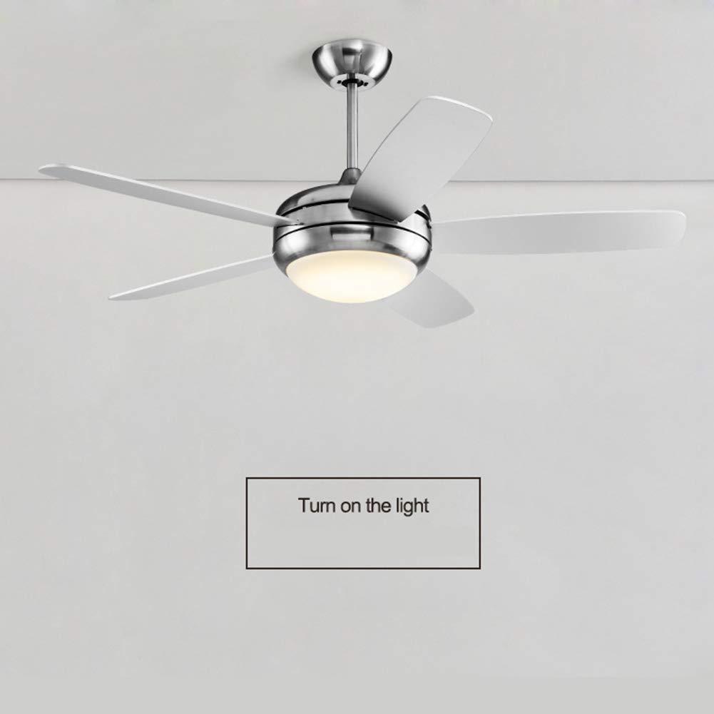 Amazon.com: Moderno ventilador de techo LED 5 hojas acrílico ...