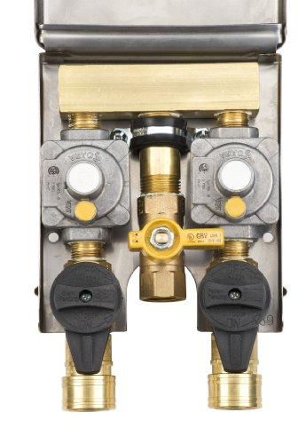 Burnaby Manufacturing Ltd Gas Plug G0101-2#DBL-SS-L90 Double Gas Outlet With Bottom Inlet Connection