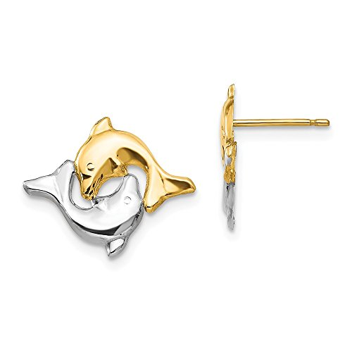 Yellow Gold Dolphin Animal - 14k Yellow Gold Dolphin Post Stud Earrings Animal Sea Life Fine Jewelry Gifts For Women For Her