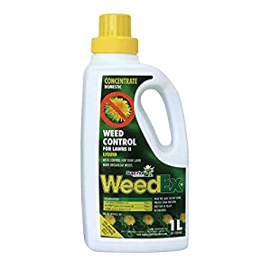 WEEDEX Weed Control Concentrate 1LT