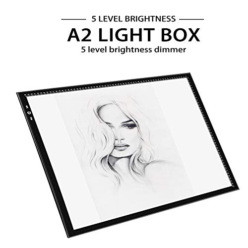 A2 Light Box Light
