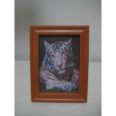 Amazon.com: Genius Collections White Tiger Animal Picture Frames ...