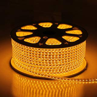Errol LED Strip Rope Light,Water Proof,Decorative led Light with Adapter. (Warm White (Yellow), 10 Meter)