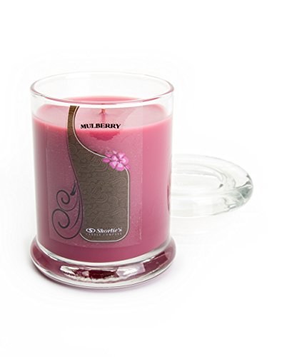 Mulberry Candle - Small Dark Red 6.5 Oz. Highly Scented Jar Candle - Made with Natural Oils - Christmas & Holiday Collection ()