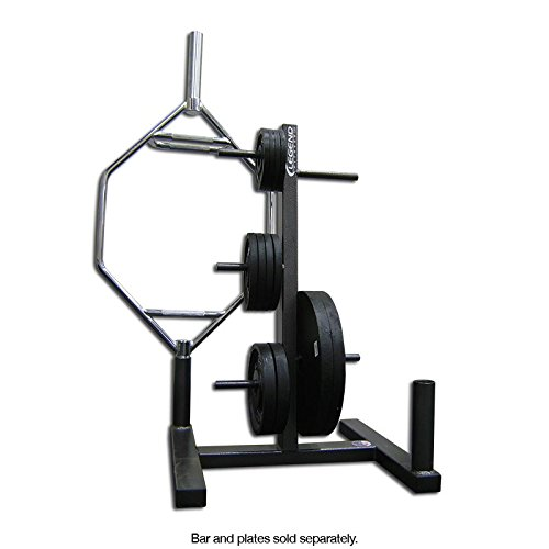 Legend Fitness 3173 USA-Made Combo Plate Tree and Olympic Bar Organizer - Gym Storage Rack holds Standard and Olympic Weight Plates by Ironcompany.com