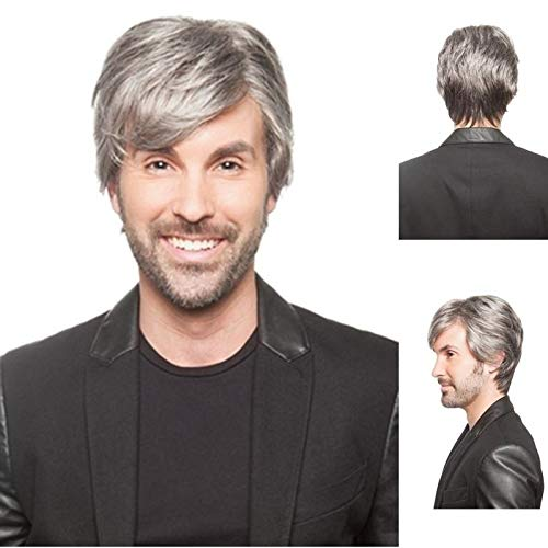 Diy-Wig Short Silver Grey Hair Wigs for Men Natural Synthetic Straight Hair Replacement Cosplay Wigs]()