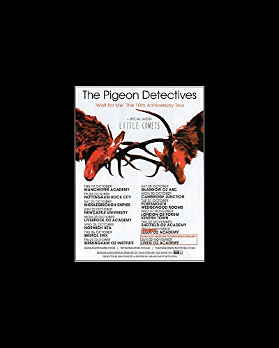 Stick It On Your Wall The Pigeon Detectives - UK 10th Anniversary Tour 2017 Mini Poster - 25.4x20.3cm