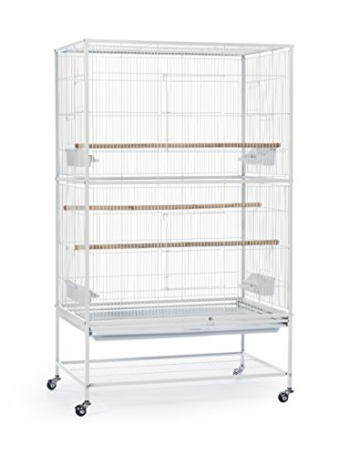 Stand Wrought Iron (Prevue Pet Products Wrought Iron Flight Cage with Stand, Chalk White)
